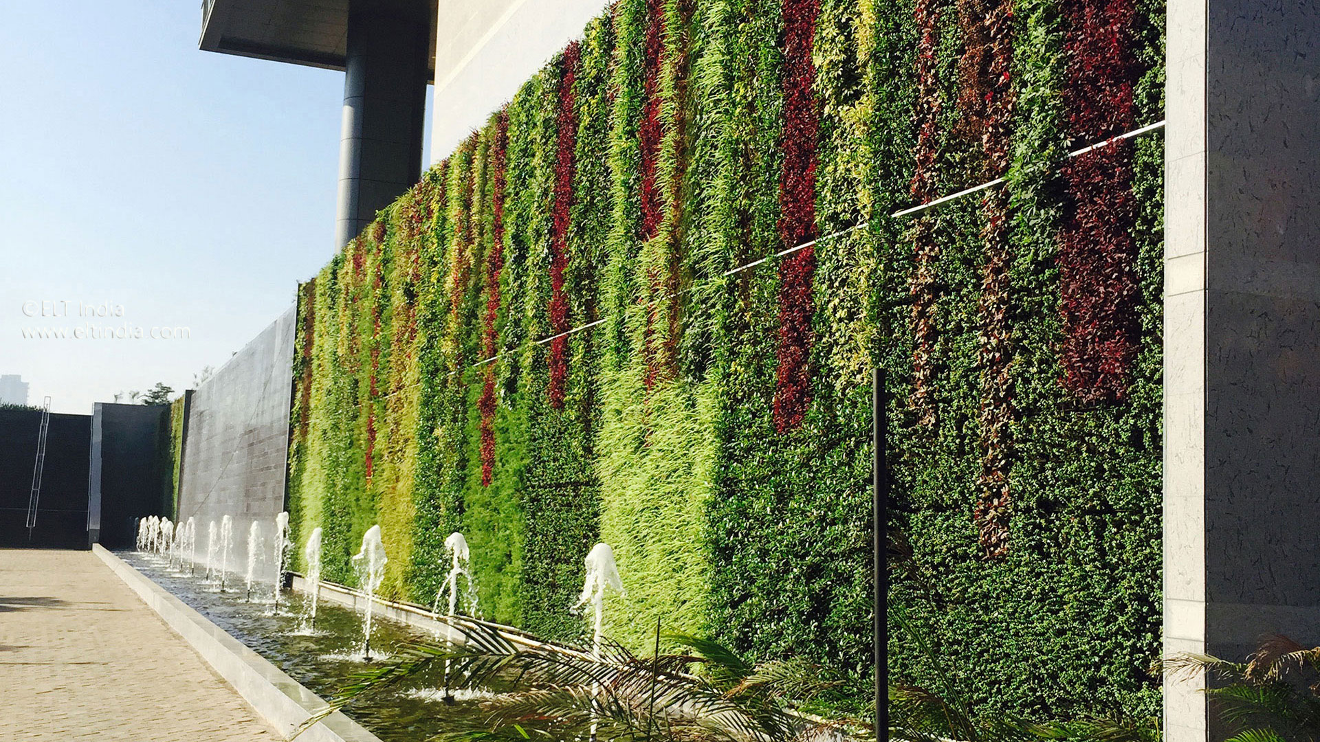 Vertical Garden Company - product living wall