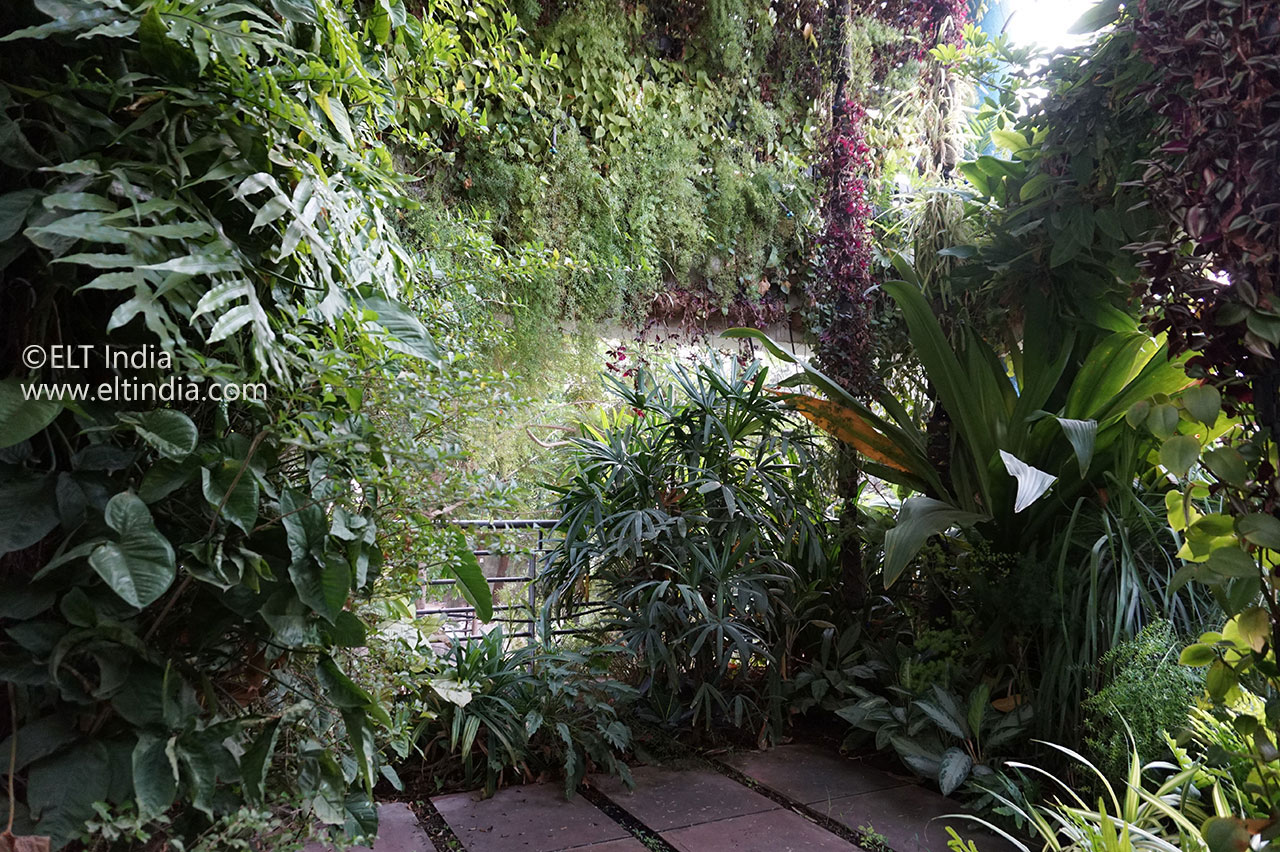 Biophilic Spaces - Vertical Garden Products - Over view image for biophilic space