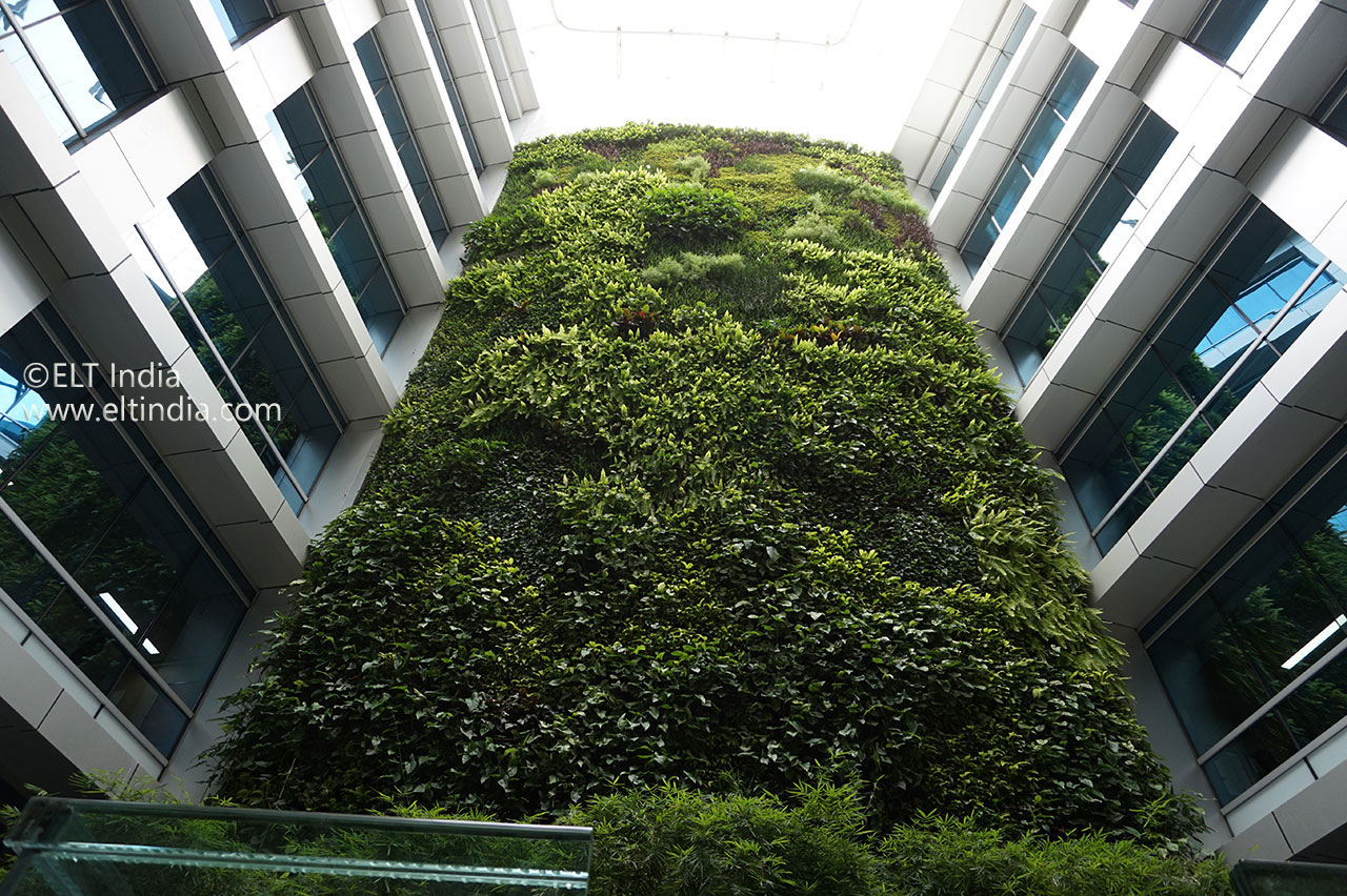 Living Wall Case Study