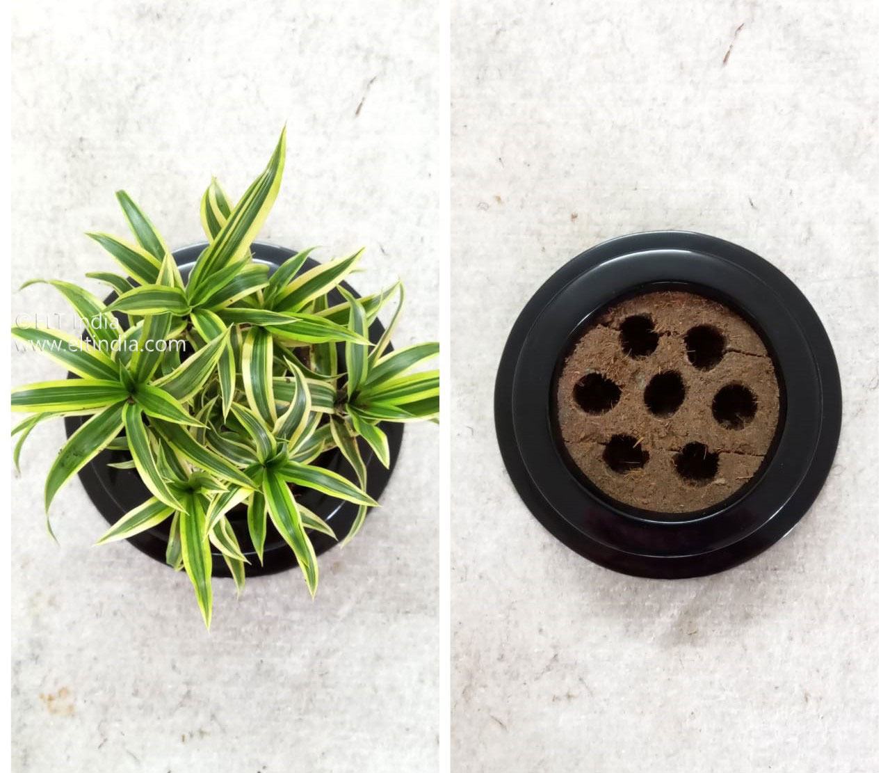 Innovative Gardening Products
