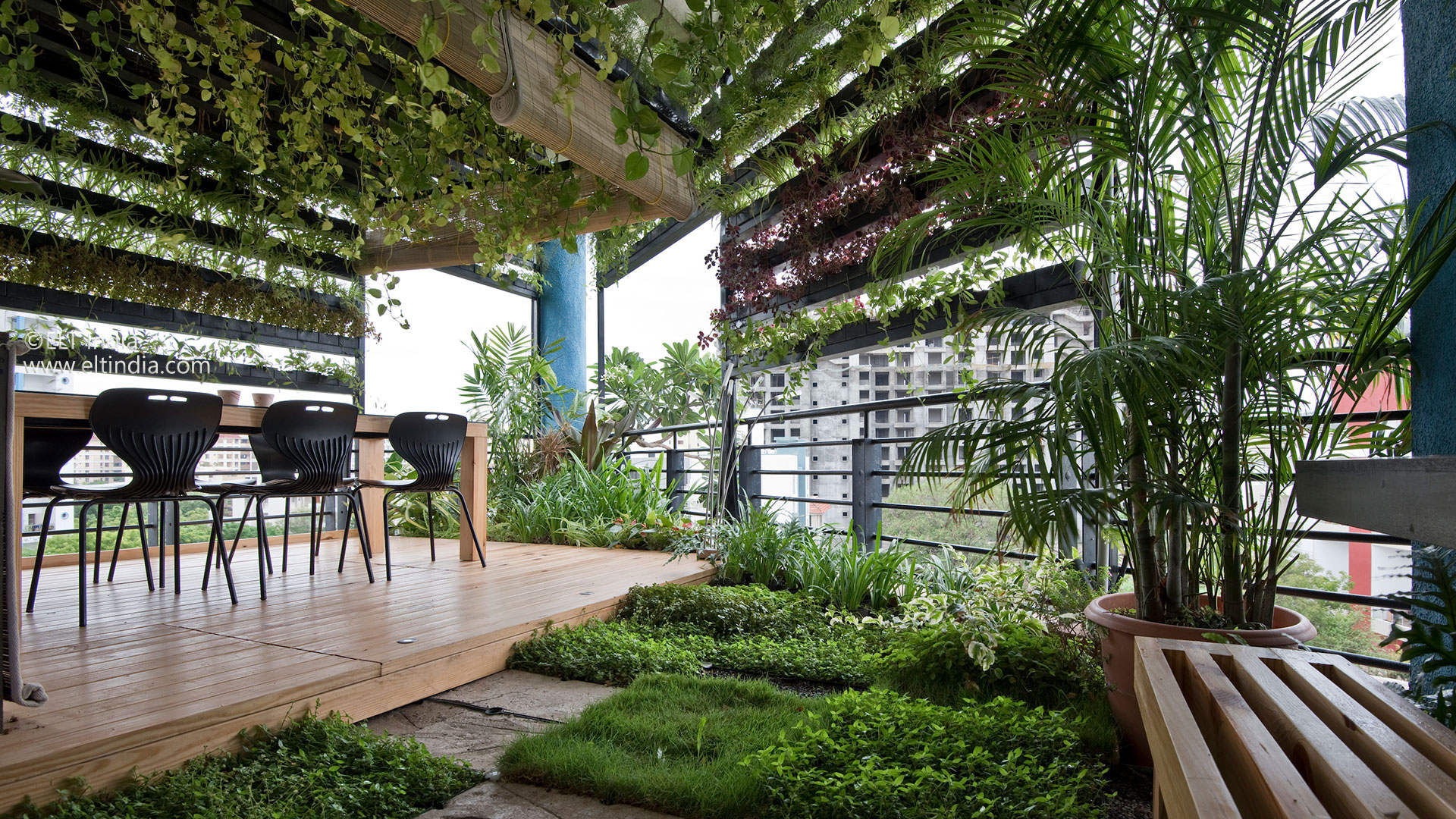 Vertical Garden Company - product biophilic spaces