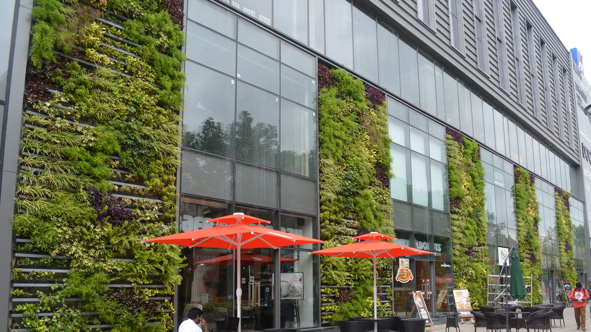 Vertical Garden Company - product greenwall lineargreen
